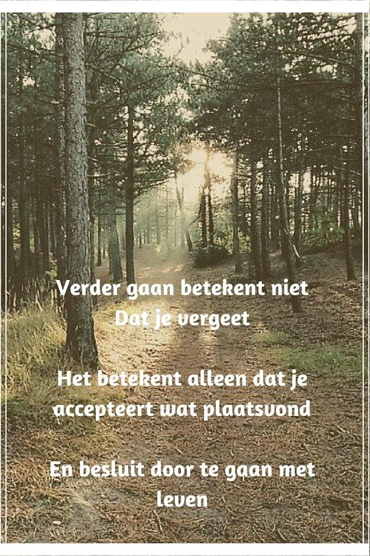 scheiden in Purmerend, scheiden in Zaandam